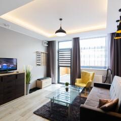 Apartament Biznes  9