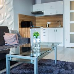 Apartament Biznes 3